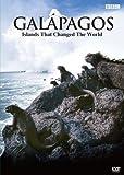 BBC ガラパゴス DVD-BOX