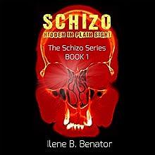 Schizo: Hidden in Plain Sight Audiobook by Ilene B. Benator Narrated by Will Tulin