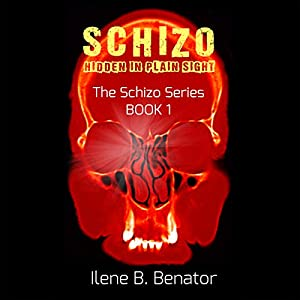Schizo: Hidden in Plain Sight Audiobook