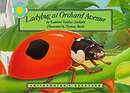 Ladybug at Orchard Avenue - a Smithsonian's Backyard Book (Mini book)