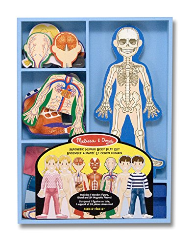 melissa-doug-magnetic-human-body-anatomy-play-set-with-24-magnetic-pieces-and-storage-tray
