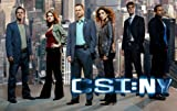 CSI NY (Crime Scene Investigation New York) Complete CBS TV Crime Series All 197 Episodes - Season 1, 2, 3, 4, 5, 6, 7, 8, 9 + Plot + Extras + Exclusive Features (52 Discs) DVD Collection Box Set
