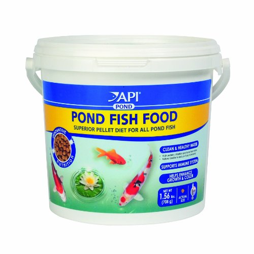 Pond fish food clean healthy water high protein enhance for Pond cleaning fish