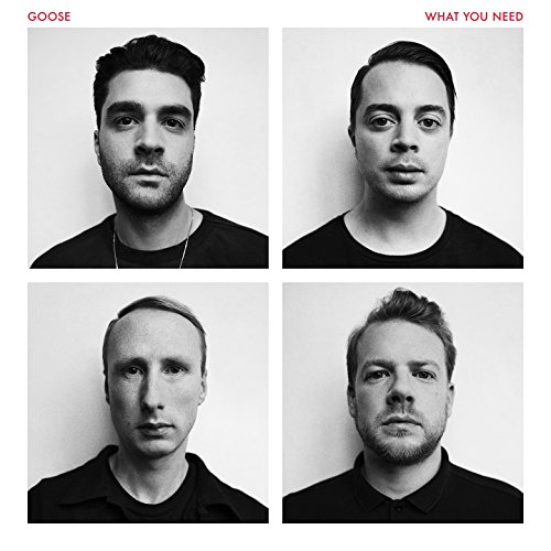 Goose - What You Need (2016) [FLAC] Download