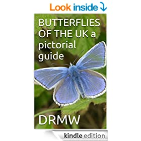 BUTTERFLIES OF THE UK  a pictorial guide