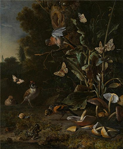 The Perfect Effect Canvas Of Oil Painting 'Melchior D'Hondecoeter Birds Butterflies And A Frog Among Plants And Fungi ' ,size: 10 X 12 Inch / 25 X 31 Cm ,this Reproductions Art Decorative Prints On Canvas Is Fit For Wall Art Decoration And Home Artwork And Gifts