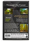 Fitness Journeys - Through the Forest, for indoor walking, treadmill and cycling workouts
