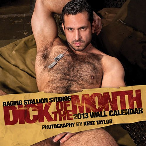 Raging Stallion Studios 2013 Wall Calendar