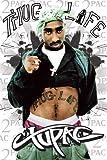 Tupac Shakur (2-PAC) - Thug Life Art Print Poster