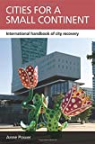 img - for Cities for a Small Continent: International Handbook of City Recovery (Case Studies on Poverty, Place and Policy) book / textbook / text book