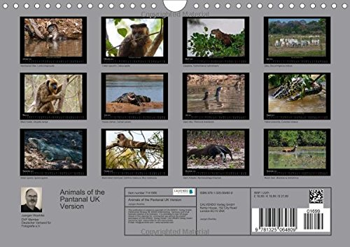 Animals of the Pantanal / UK Version (Wall Calendar 2016 DIN A4 Landscape): Portraits of animals taken from the boat or during deer-stalking (Monthly calendar, 14 pages) (Calvendo Animals)