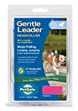 Premier Gentle Leader Quick Release Headcollar, Small, Raspberry