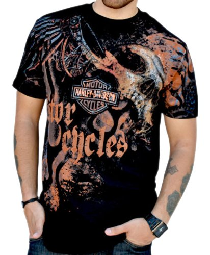 Harley-Davidson Mens Asphalt Valor Skull Black Short Sleeve T-Shirt (3X-Large)