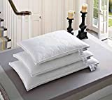 Natural Comfort Quilted Feather Billow Pillows, King, White