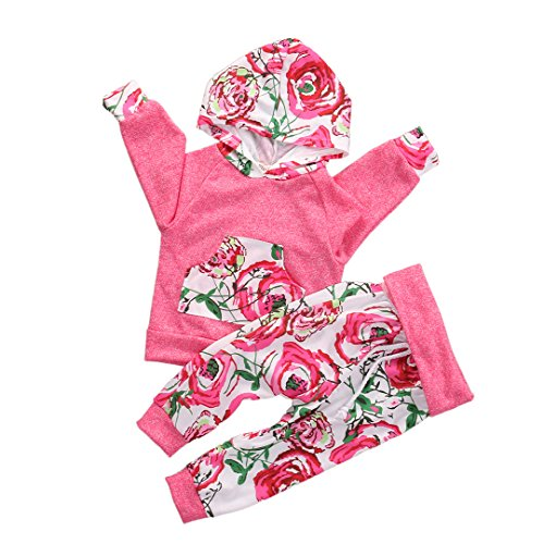 Baby Girls Long Sleeve Floral Hoodie + Pant 2 PCS Outfits Clothing Set (70 Fit 0-3M)