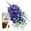 Blue Orchid Bouquet (10 Stems) and Scharffen Berger Chocolate - Without Vase
