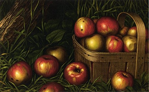 Harvest Of Apples by Levi Wells