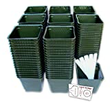 "Set of 150 Plastic Nursery Plant Pots, ""Seed Shaker"" Card and 5 Plant Labels. Color: Green, Seedling Containers"
