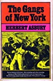 img - for Gangs of New York: An Informal History of the Underworld book / textbook / text book