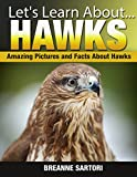 Hawks: Amazing Picture and Facts About Hawks (Lets Learn About)
