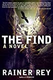 img - for The Find by Rainer Rey (2015-01-20) book / textbook / text book