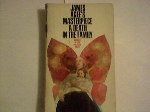 a book review of a death in the family by james agee Family travel money  it was james agee's film reviews of 'astonishing excellence',  by the time the book was published in 1941,.