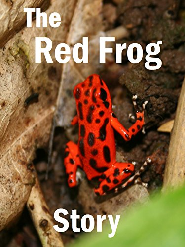 The Red Frog Story