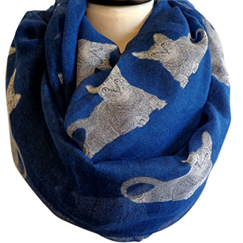 Dimore Print Voile Fashion Scarves For Womens (Blue Cat)