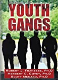 img - for Youth Gangs book / textbook / text book