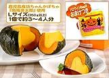 【ギフトに最適】小玉かぼちゃの焼きプリン