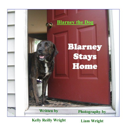 Blarney the Dog: Blarney Stays Home (Blarney the Dog) PDF