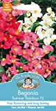 Mr. Fothergill's 13690 2000 Count Begonia Summer Rainbow F2 Seed