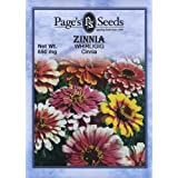 Zinnia, Whirligig