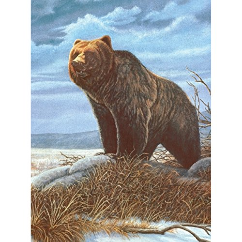 Royal Brush 8.75 by 11.75-Inch Junior Paint by Number Kit, Small, Grizzly Bear