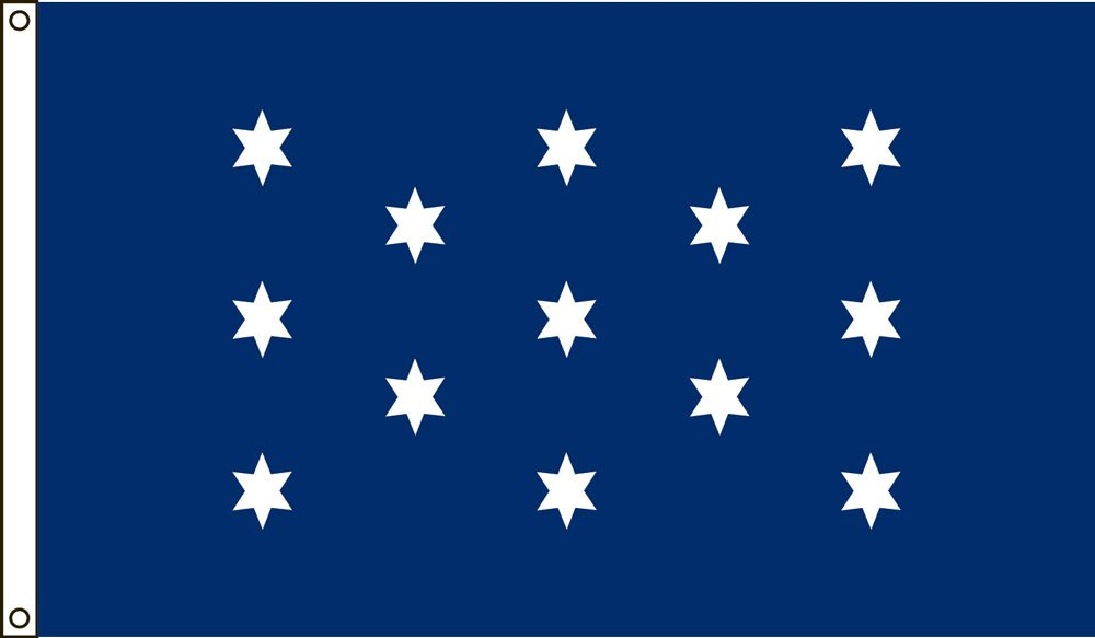 George Washington's Commander In Chief flag