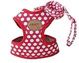 Rant Bell 小型犬 ハーネス リード セット ドット柄 かわいい 肉球 (赤 L)