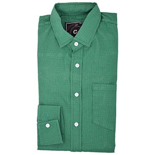 Deeksha Mens green 100 cotton shirt