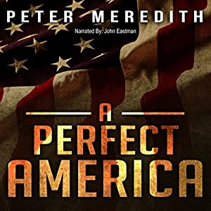 A Perfect America Audiobook