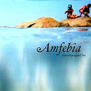 Amfebia