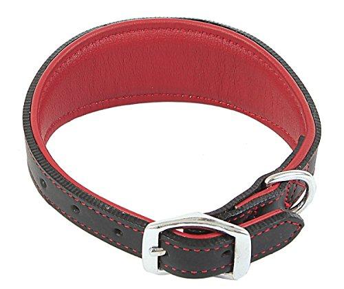 outhwaite-imbottito-greyhound-collare-15-x-46-centimetri-rosso-nero