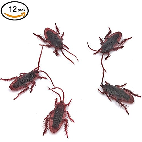 CECII Fake Roaches Prank Novelty Cockroach Bugs simulation model (12pcs) (Starter Gundam Model Kit compare prices)