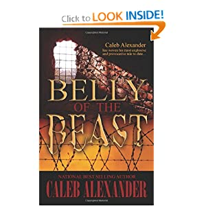 Downloads Belly of the Beast ebook