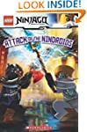LEGO Ninjago: Attack of the Ninroids...