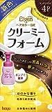 ビゲンDXクリーミーフォームポンプ4P 【HTRC5.1】