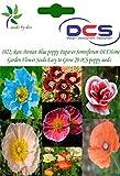 (022)Rare Persian Blue poppy Papaver Somniferum DIY Home Garden Flower Seeds Easy to Grow 20 PCS poppy seeds