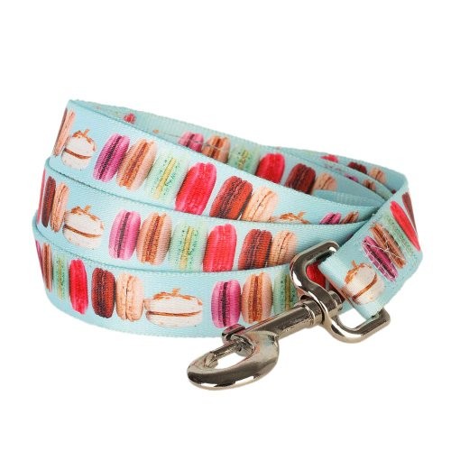 """Blueberry Pet 1"""" By 4-Foot The Ultimate Macaroon Cake With Spring Pastel Hues Basic Nylon Dog Leash, Large front-842949"""