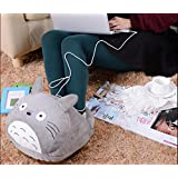 Cartoon USB Charging Heating winter Warm plush Slipper Heated Warmer Shoes Heated Slippers, Warming Slippers,Heating Pad, Multi-use Washable Big Feet Warm Slippers Shoes Foot Warmer Shoes Totoro