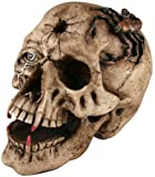 Halloween Fake Skull with Fangs Prop Picture