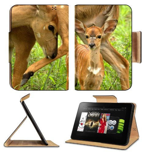 Wildlifes Kruger Deers Baby National Park Animals Amazon Kindle Fire Hd 8.9 [2012 Version] Flip Case Stand Magnetic Cover Open Ports Customized Made To Order Support Ready Premium Deluxe Pu Leather 9 13/16 Inch (250Mm) X 6 7/8 Inch (175Mm) X 11/16 Inch (1 front-937452