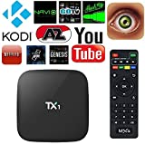 EXW TX1 Amlogic S805 Quad Core Smart TV Box With Xbmc Kodi Pre-installed Android 4.4 Kitkat System H.265 Wifi LAN Miracast Airplay Stream Media Player 1G RAM 8G ROM (TX1 S805)